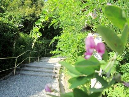 大神神社の久すり道