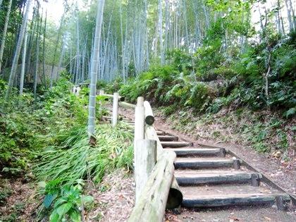 亀形石造物から酒船石へのアクセス道