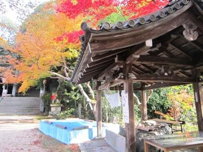 等彌神社の手水舎