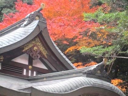 大神神社の紅葉 清明殿