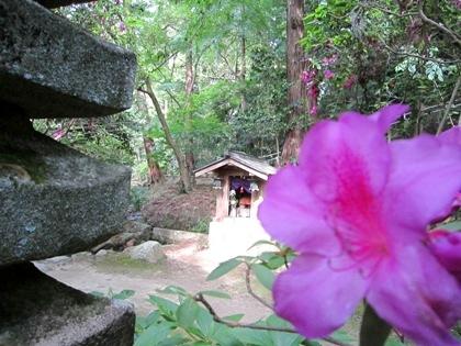 長岳寺十三重石塔とツツジ
