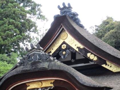 大神神社拝殿 十六菊花紋