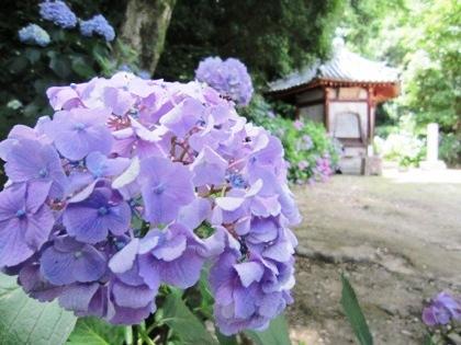 矢田寺舎利堂