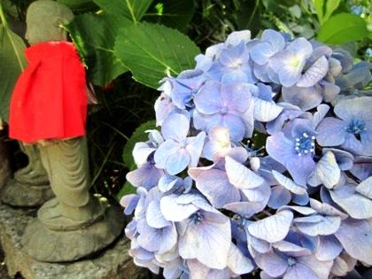 矢田寺の地蔵と紫陽花
