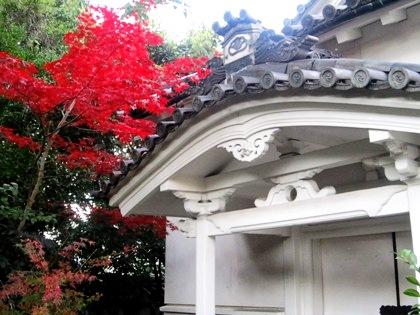 漢国神社の紅葉