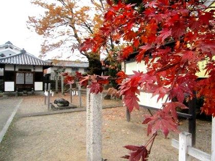 素盞鳴神社の紅葉