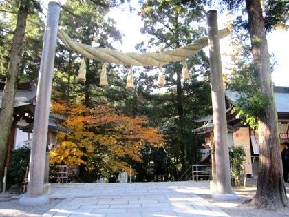 大神神社の黄葉