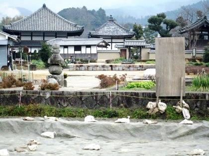 飛鳥寺西方遺跡