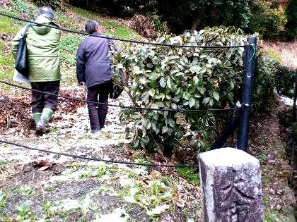 箸墓古墳の兆域原標