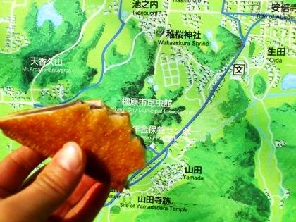 桜井駅周辺地図