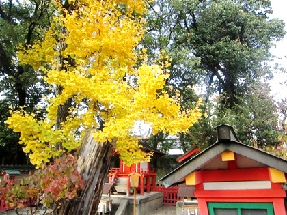 率川神社の紅葉