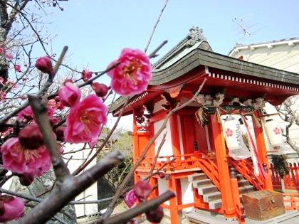 梅の花と佐保川天満宮