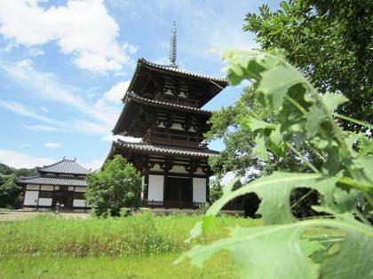 法起寺三重塔と法起寺講堂