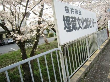 桜井市立埋蔵文化財センターの桜