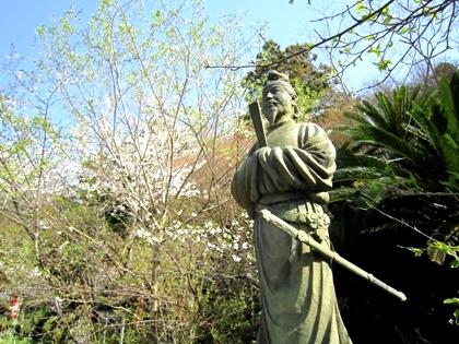 平等寺の桜