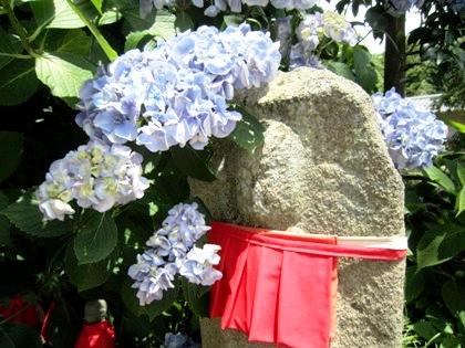 矢田の地蔵さん 紫陽花