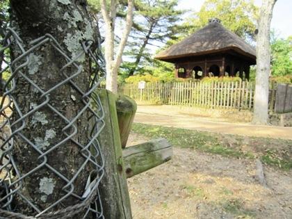 鹿の防護ネットと丸窓亭