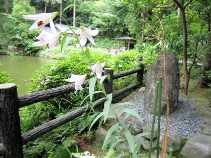 三島由紀夫の石碑とささゆり