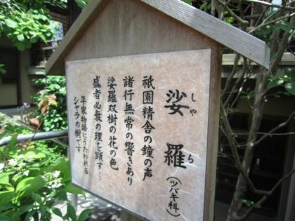 娑羅双樹 矢田寺