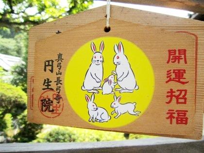 円生院の絵馬
