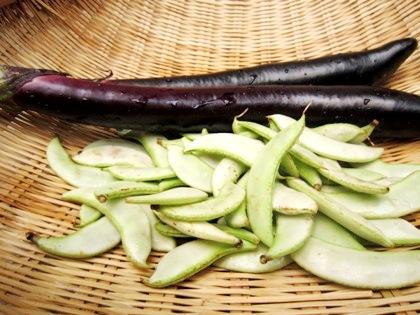 フジ豆と長茄子
