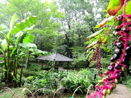 茶花の庭のあずまや