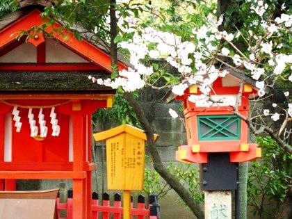 率川神社の梅