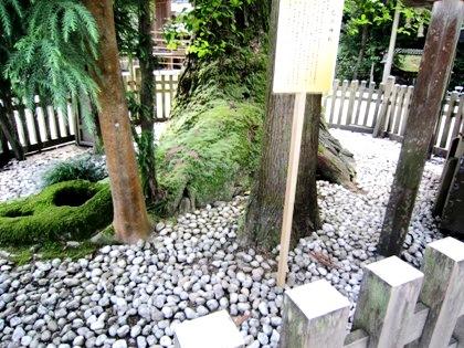 巳の神杉 大神神社