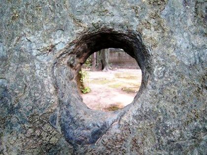 青石橋の穴