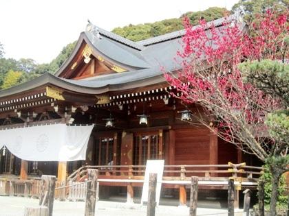 大神神社の紅梅