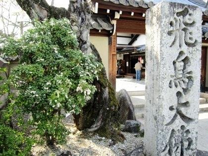飛鳥大仏の石碑と馬酔木