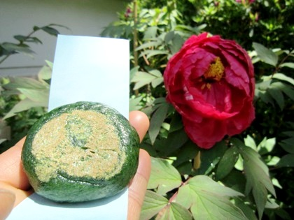 長谷寺名物の草餅