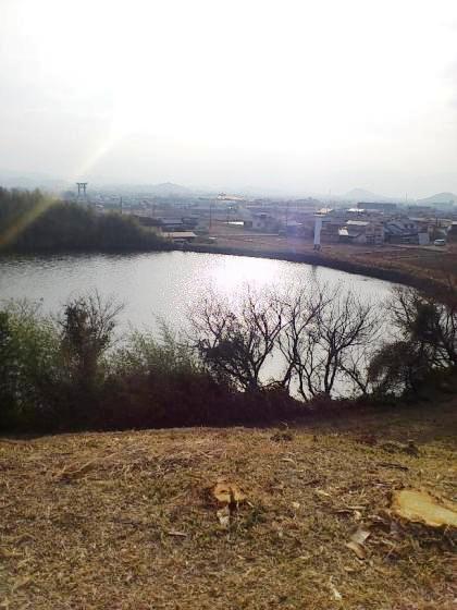 大和三山と大神神社の大鳥居