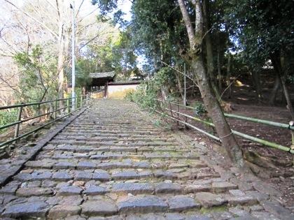 東大寺知足院の石段
