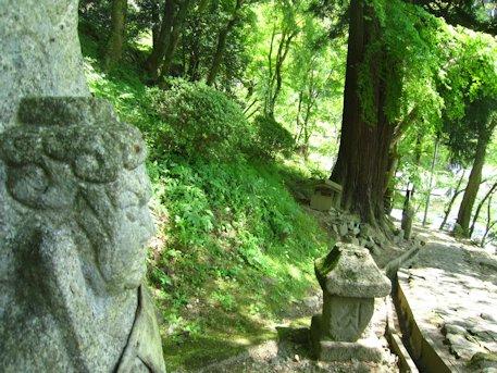 不動明王と二本の杉