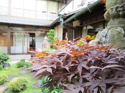 大正楼中庭 日本庭園