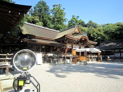 大神神社のミスト