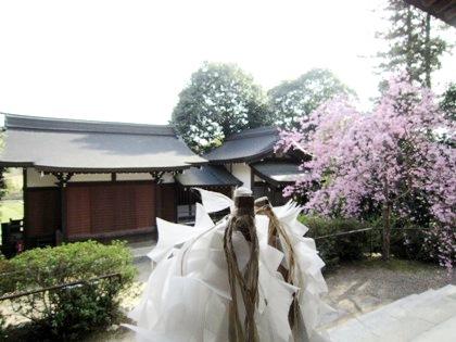 飛鳥坐神社の神楽殿