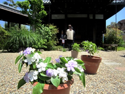 璉珹寺のニオイバンマツリ