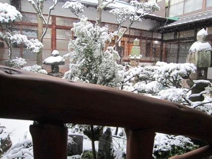雪の降り積もる中庭