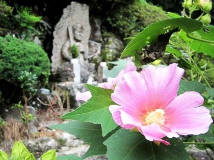 玄賓庵 秋の花