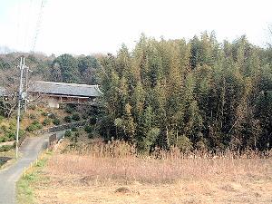 香久山に通じる道