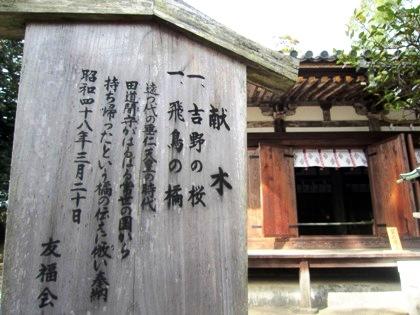 大直禰子神社の橘
