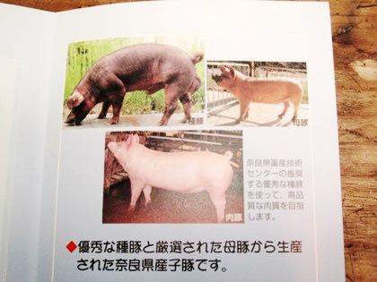 ヤマトポークの写真パンフレット